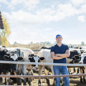 Farm Insurance - Homepage